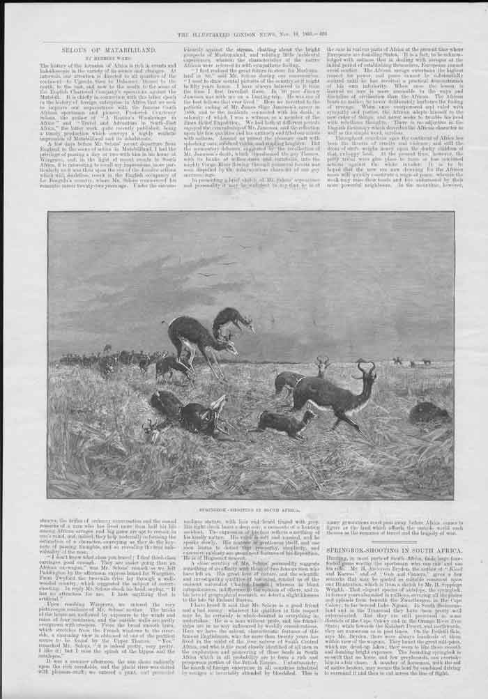[Print Springbok Shooting South Africa 1893 36A3A176 Old Original]