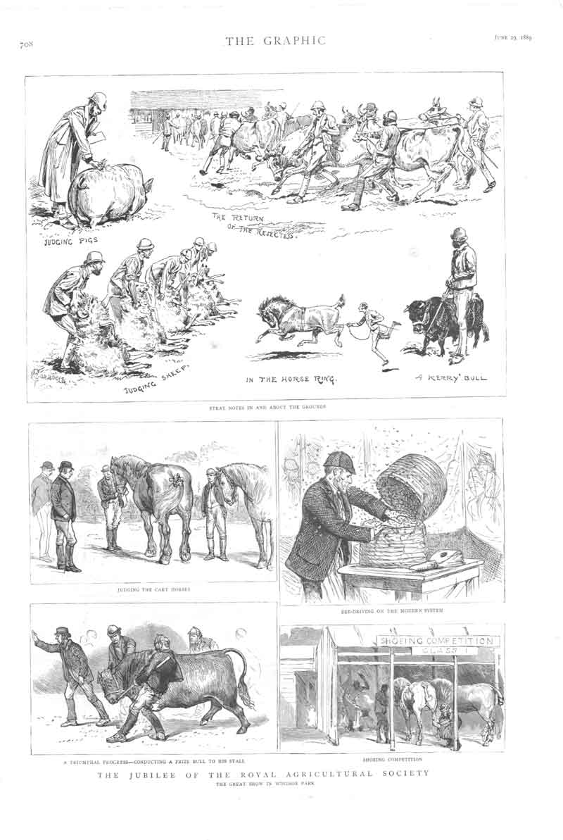 [Old Antique Print Jubilee Royal Agricultural Society 1889 082161 ]