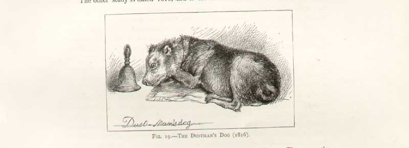 [Print Landseer Sketch ..The Dustmans Dog 1816 118A308 Old Original]