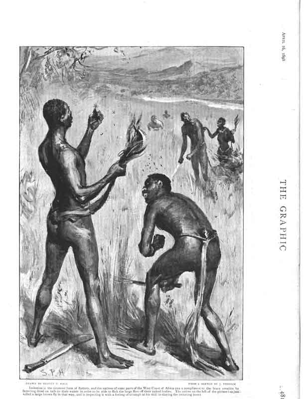 [Print Borrowed Plums Dressing Up Africa 1898 481La316 Old Original]