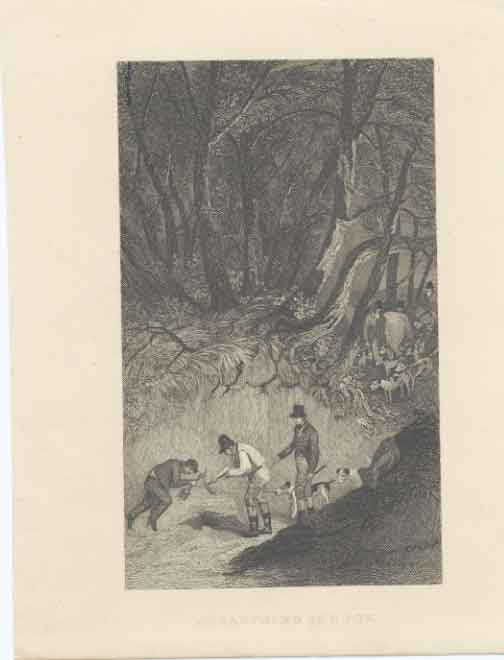 [Print Fox Hunting Unearthing The Fox C1850 0A37A3A3 Old Original]