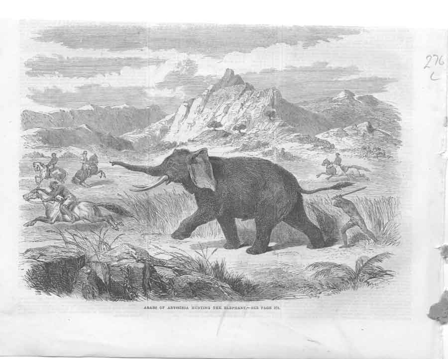 [Print Abyyssinia Arabs Elephant Hunt A276A376 Old Original]