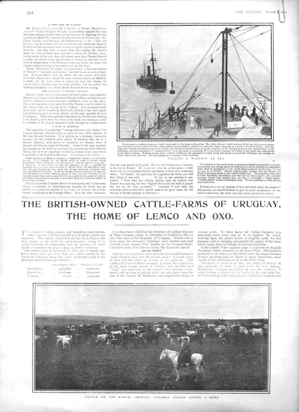 [Print British Cattle Farms Uruguay 1902 2A34A416 Old Original]