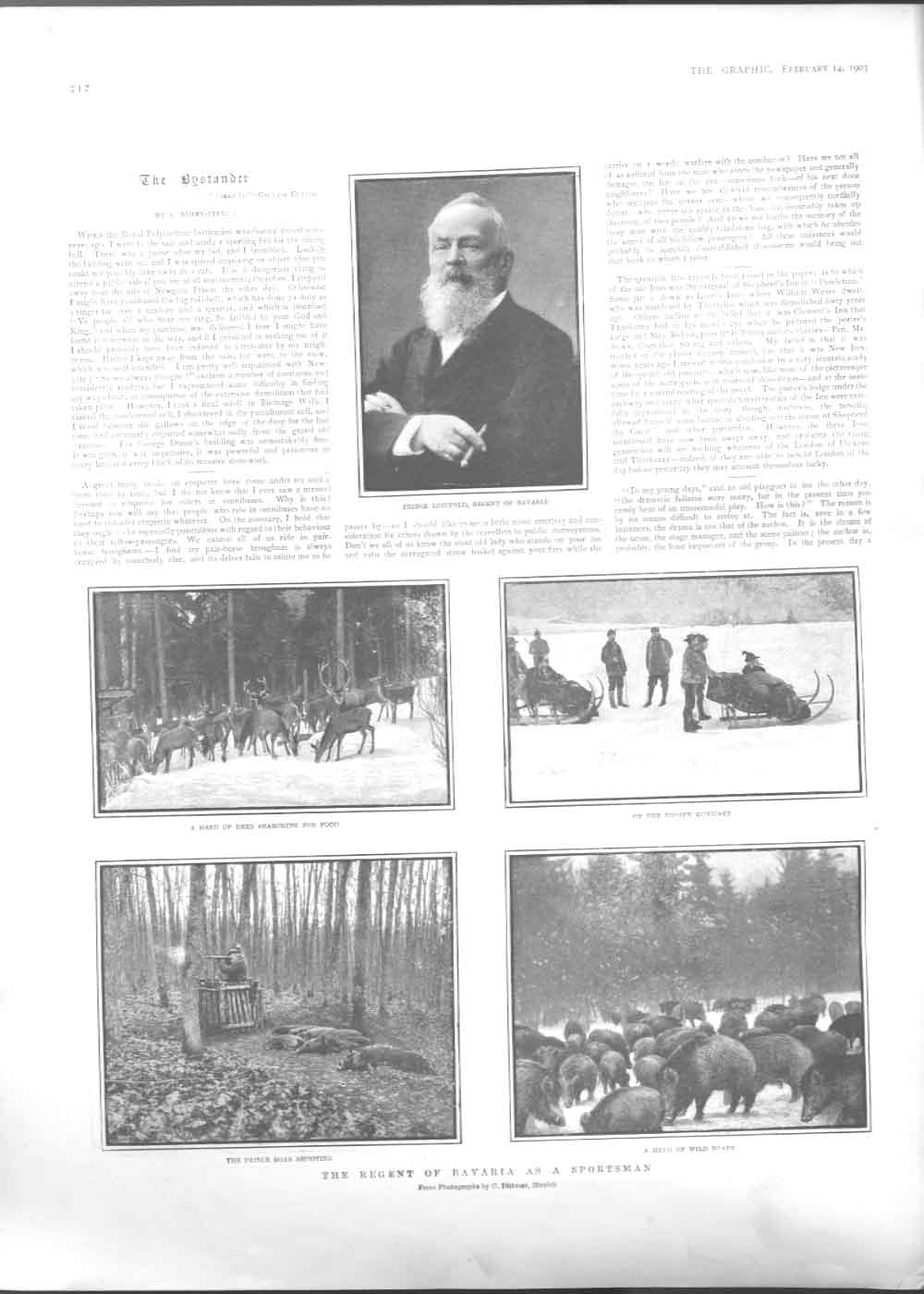 [Print Regebt Bavaria As Sportsman Boar Shooting 1903 3A21A416 Old Original]