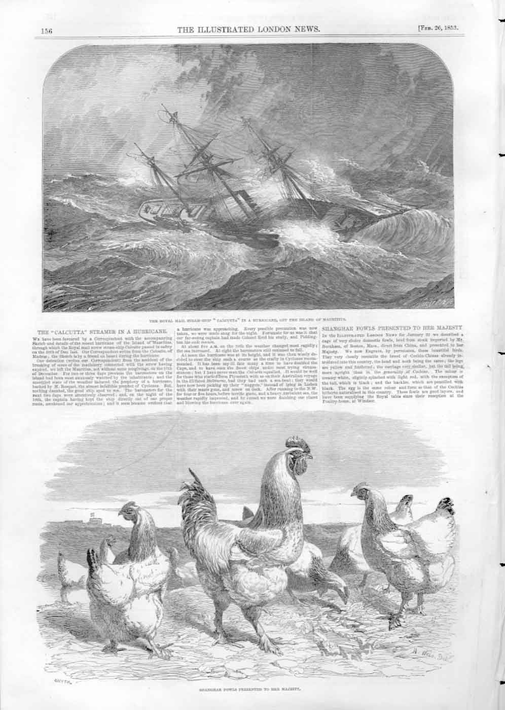 [Print Royal Mail Ship Calcutta In Storm & Shangai Fowls 1853 3156A476 Old Original]