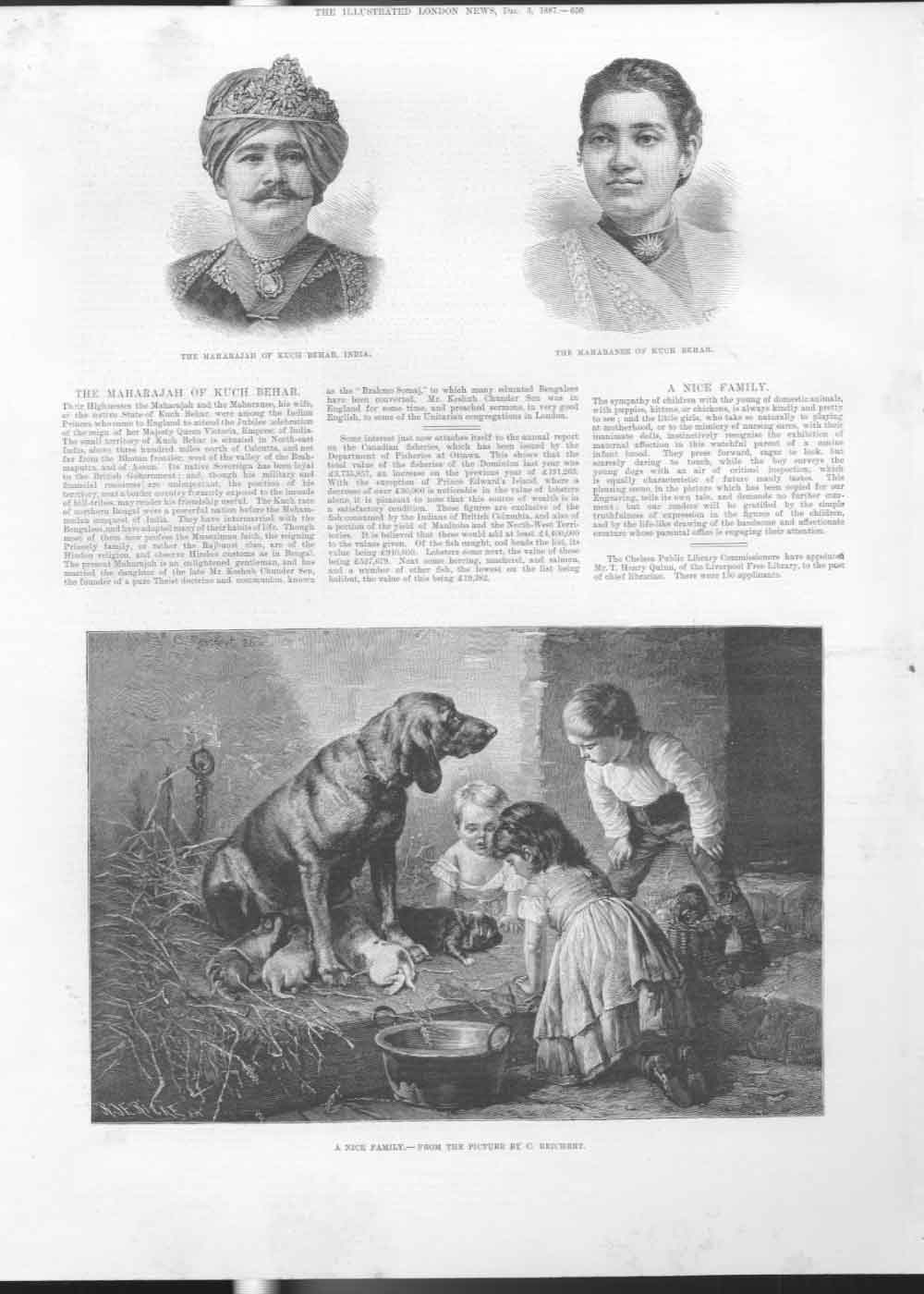 [Print Dog & Puppies Fine Art By Reichert 1887 650A476 Old Original]