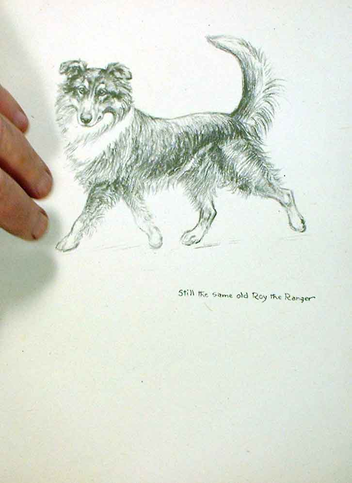 [Print Roy Ranger Sketch By Barker Just Dogs 07A5251 Old Original]