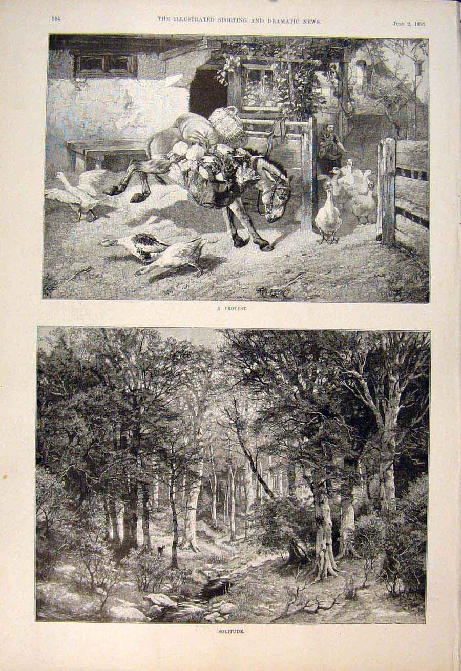 [Print Protest Donkey Geese Solitude Forest Deer Fine Art 1892 845600 Old Original]