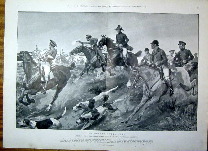 [Print Fox Hounds Under Fire 1904 Spain 21T5601 Old Original]