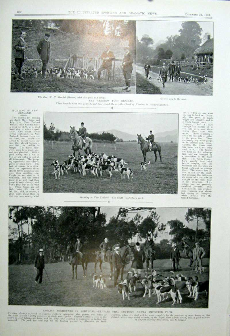 [Print Winslow Foot Beagles Fox Hounds In Portugal 1904 925601 Old Original]
