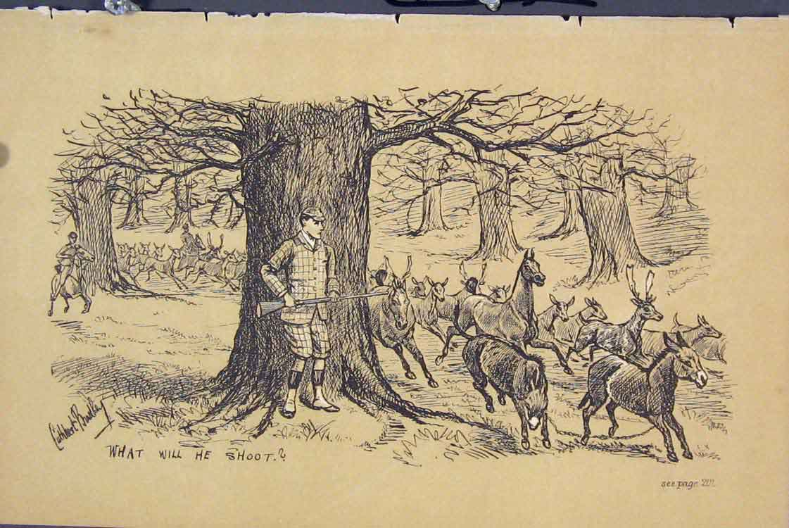 Print Man Gun Trees C1881 Deer Donkeys Country 175731 Old Original