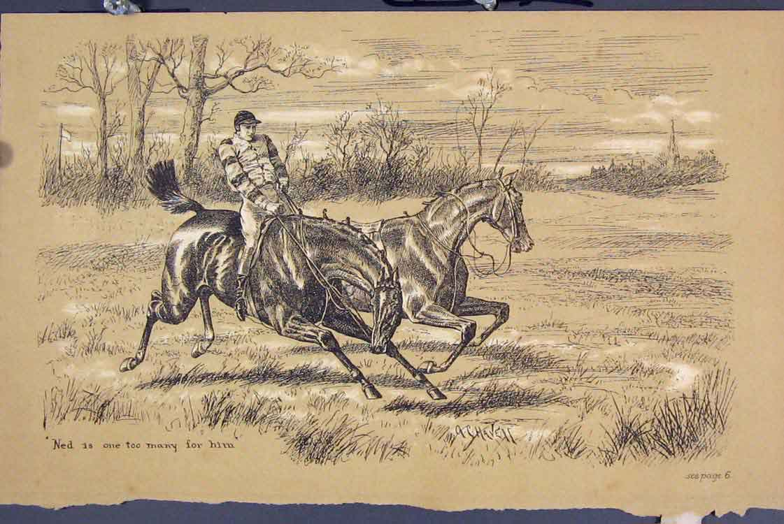 Print C1881 Horse Jockey Loose Country Field 285731 Old Original