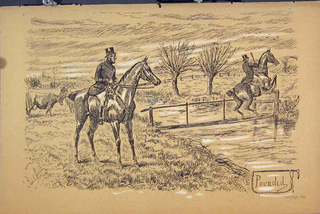 Print C1881 Horse Jumping River Cow Country Scene Sepia 705731 Old Original