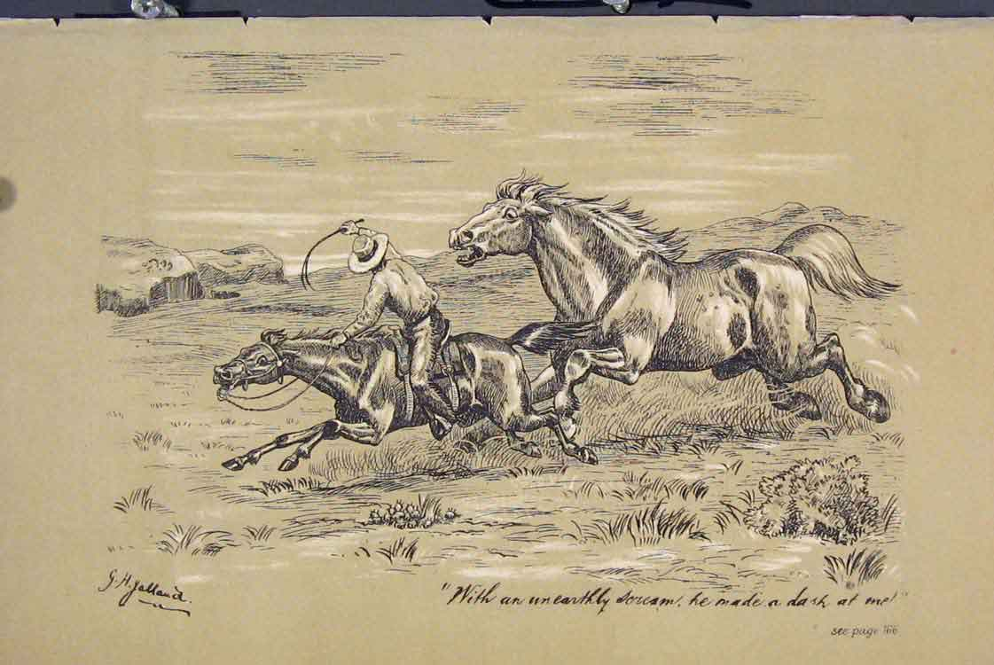 Print C1881 Wild Horse Chasing Man Country Scene 715731 Old Original