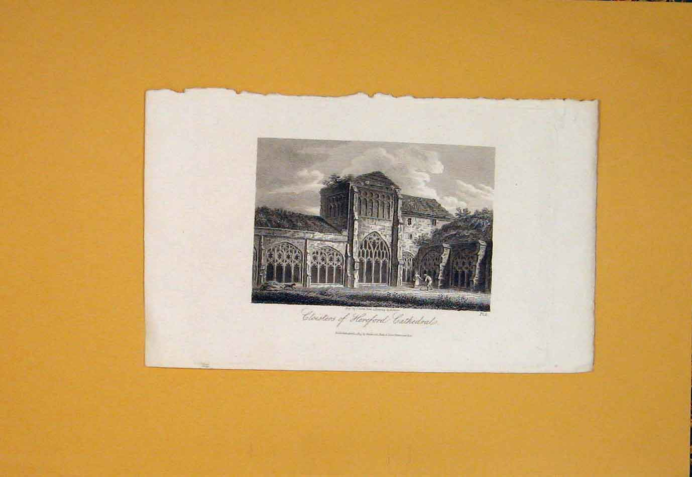 Print Cloisters Hereford Cathedral Fine Art 726021 Old Original