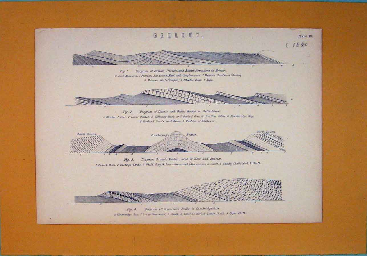 Print Geology Permian Oolitic Rocks England Type Formation 676091 Old Original