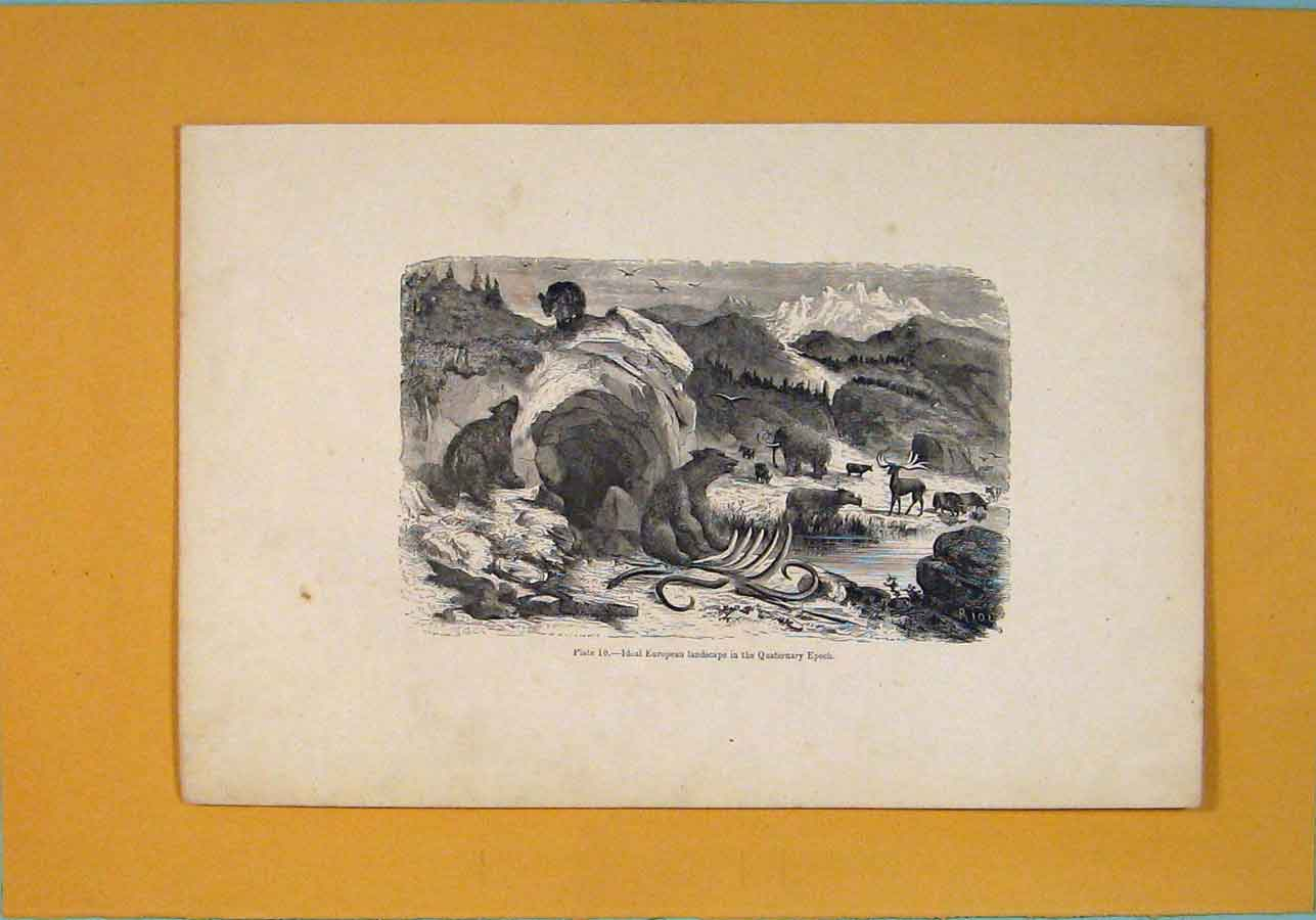 [Print European Landscape Quaterary Epoch C1870 796091 Old Original]