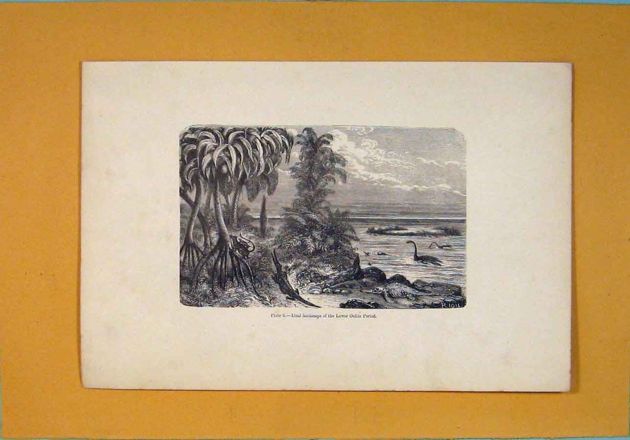 Print C1870 Ideal Landscape Lover Oolite Period 846091 Old Original