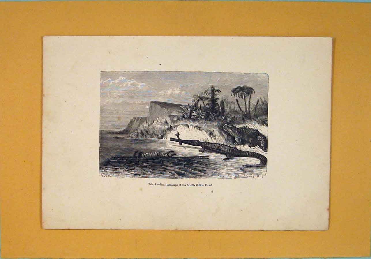 Print Ideal Landscape Middle Oolitic Period C1870 856091 Old Original