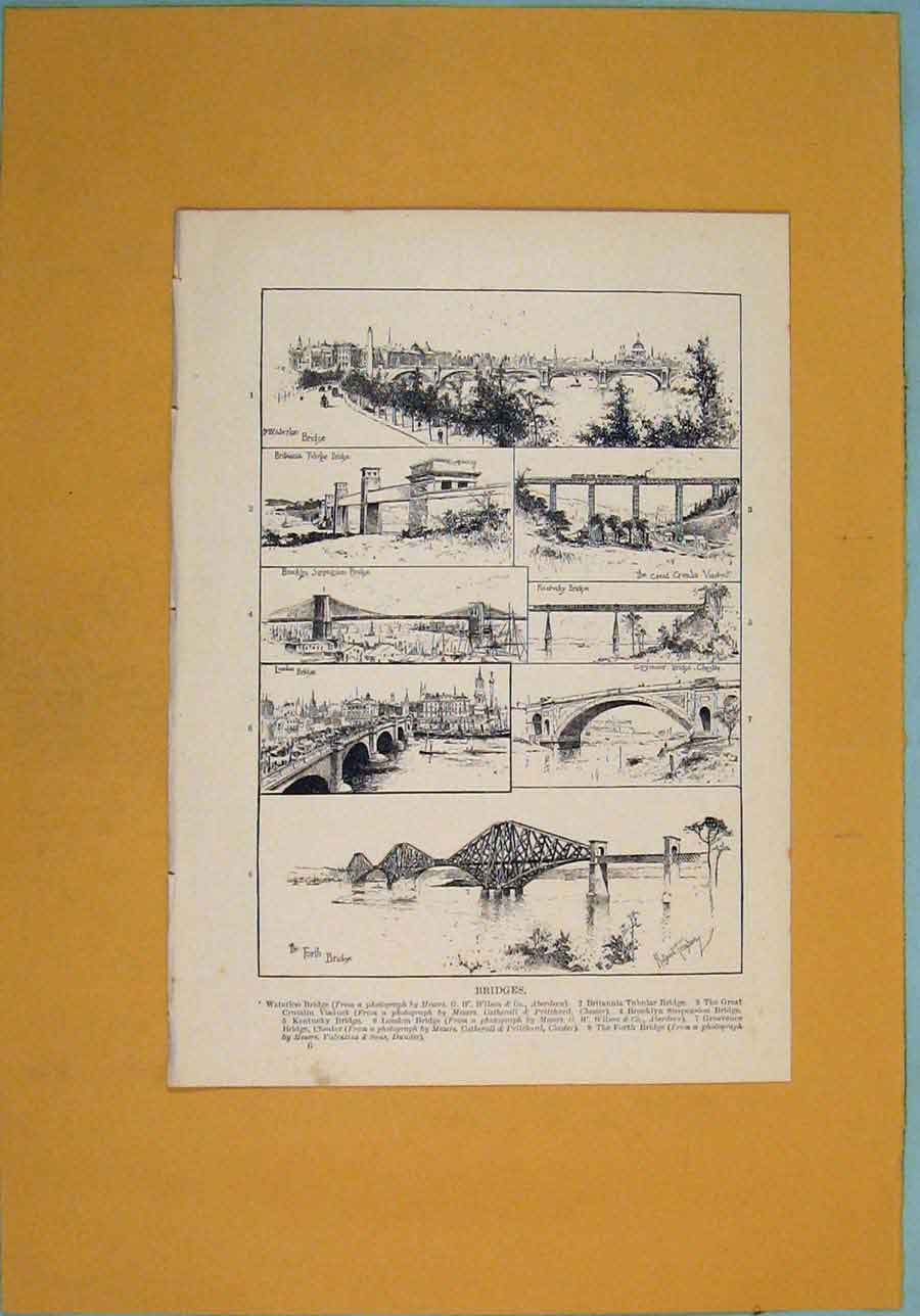 Print Bridge Bridges Waterloo Tubular Kentucky London 206341 Old Original