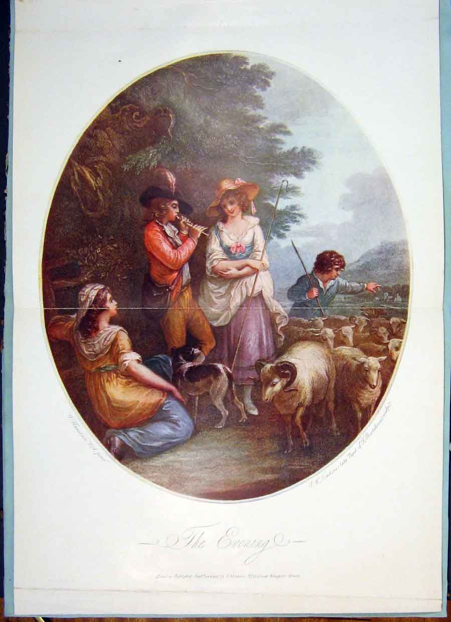 Print Evening Family Sheep Whistle Color Tomkins Hamilton Art 206371 Old Original