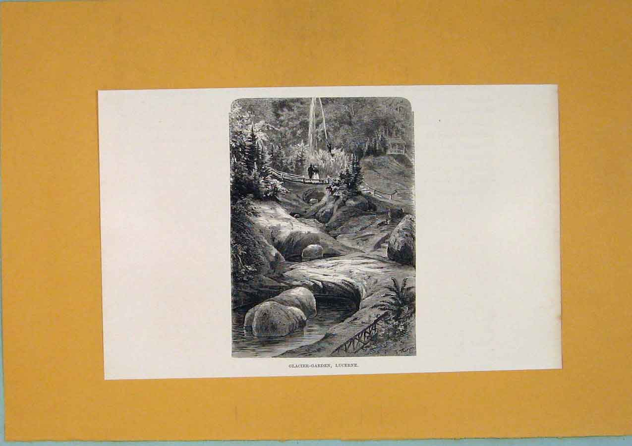 Print C1878 Glacier Garden Lucerne Switzerland 016411 Old Original