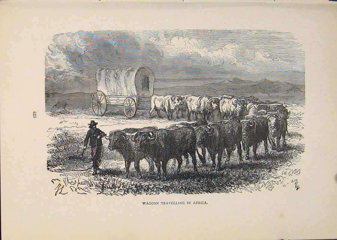 Print Waggon Africa Waggons Travel Travelling Cart Carriage 156431 Old Original