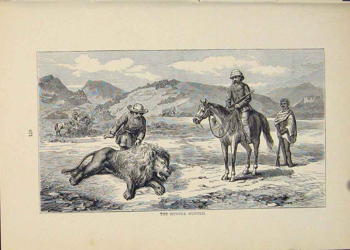 Print Hunter Hunted Hunting Lion Lions Horse Horses 236431 Old Original
