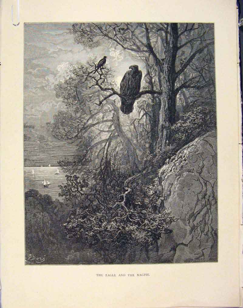 Print Aesop Fable Ccxxi Eagle Magpi 1868 Story Art 216611 Old Original