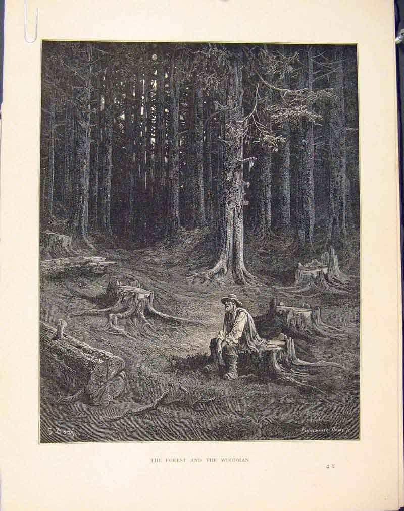 Print Forest Woodman Story Image C1868 Aesop Fable 266611 Old Original