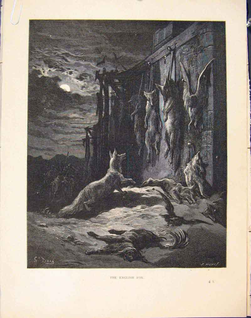 Print English Fox Aesop Fable C1868 Story Art Image 316611 Old Original