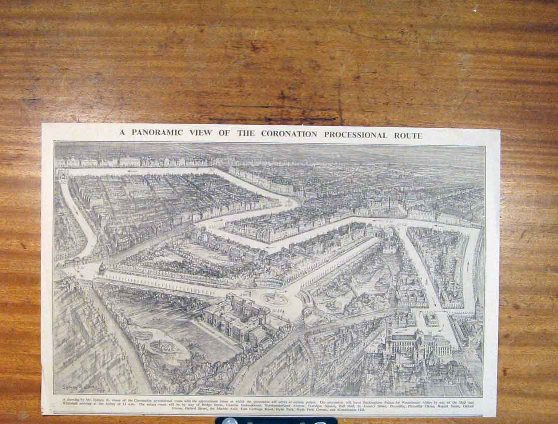 Print Panoramic Coronation Processional Route 016791 Old Original