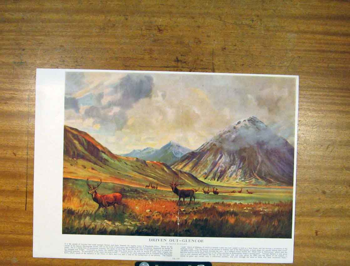Print Driven Out Glencoe Frank Wallace Fine Art 566791 Old Original
