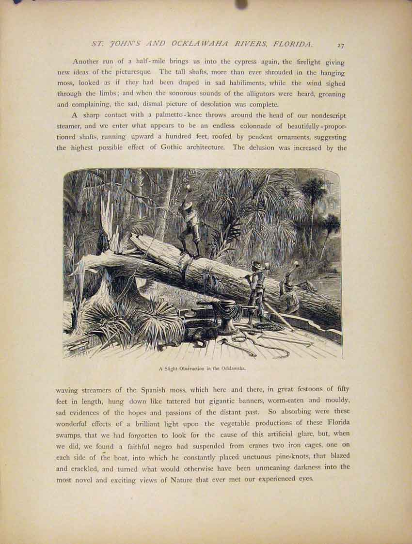 Print Ocklawaha C1872 Wood Engraving Fine Art 157111 Old Original