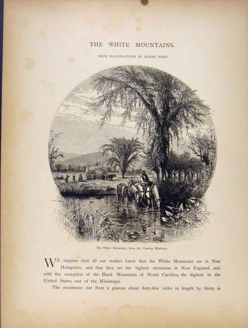 Print White Mountains Conway Meadows Fine Art 757111 Old Original