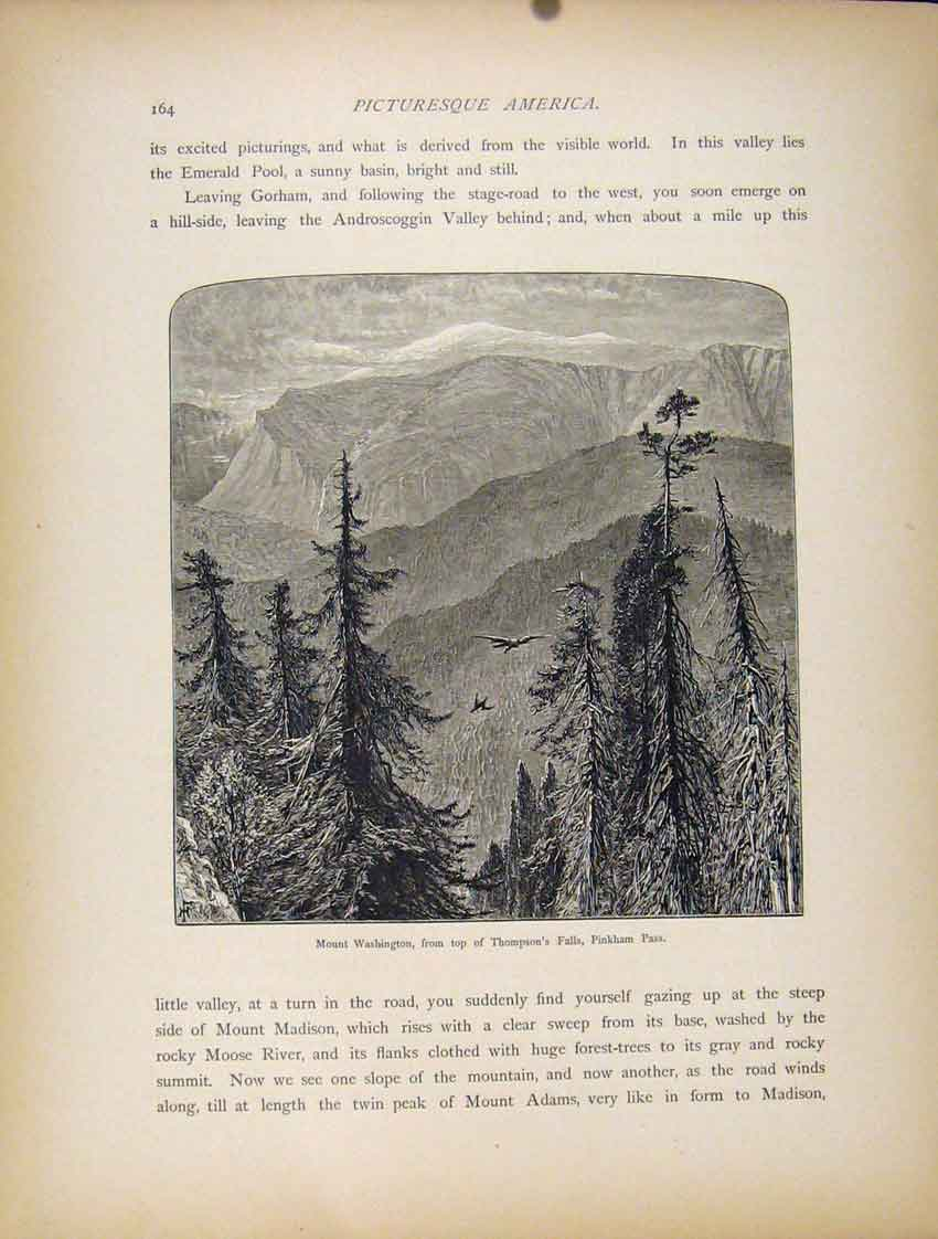 Print Mount Washington Thompsons Falls Pinkham Pass 837111 Old Original