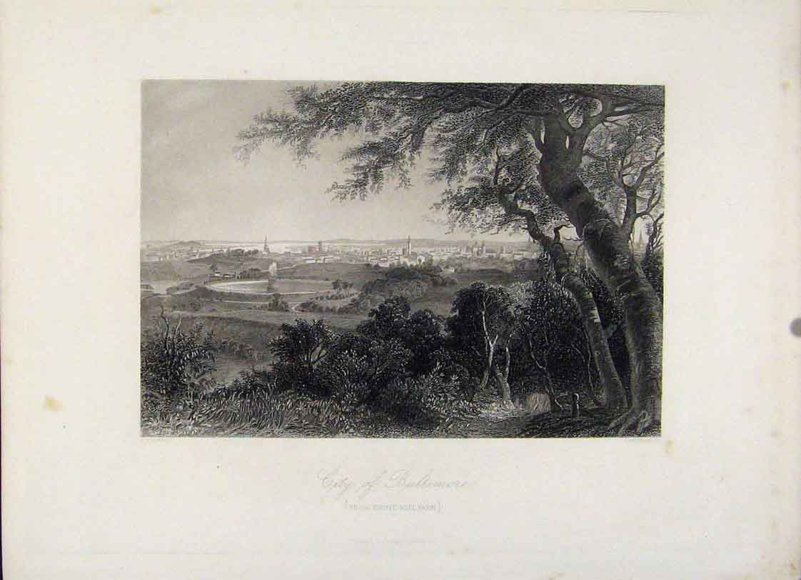 Print City Baltimore Druir Hill Park Engraving 517121 Old Original