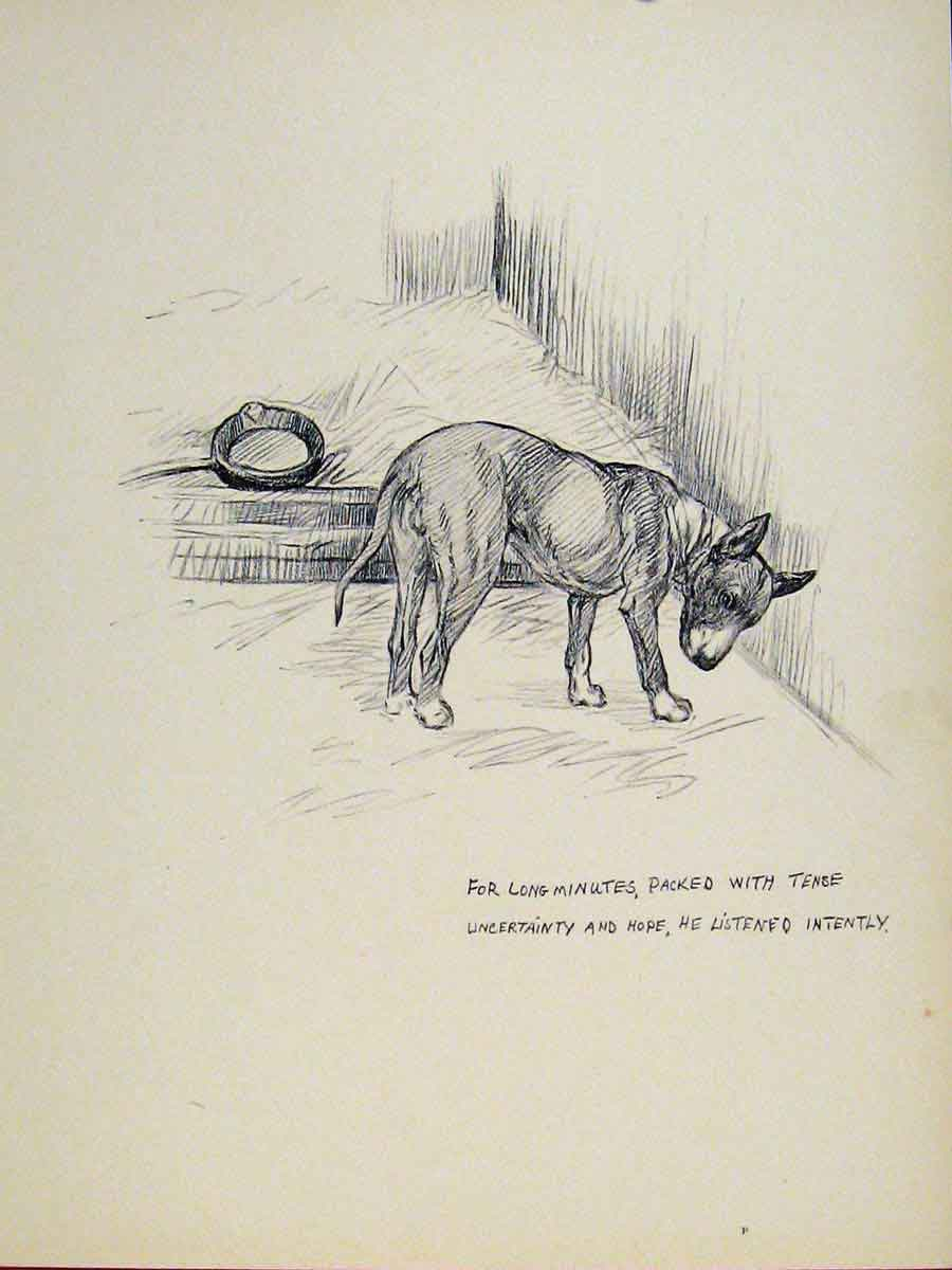 Print Etching Sketch Fine Art C1938 Dog Hound Pet 497131 Old Original