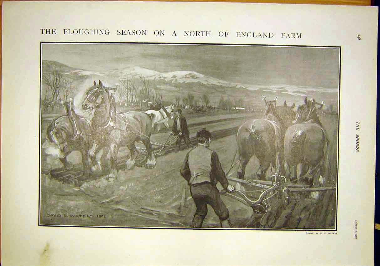 Print Ploughing Season Farm England Horse Plough 1902 487311 Old Original