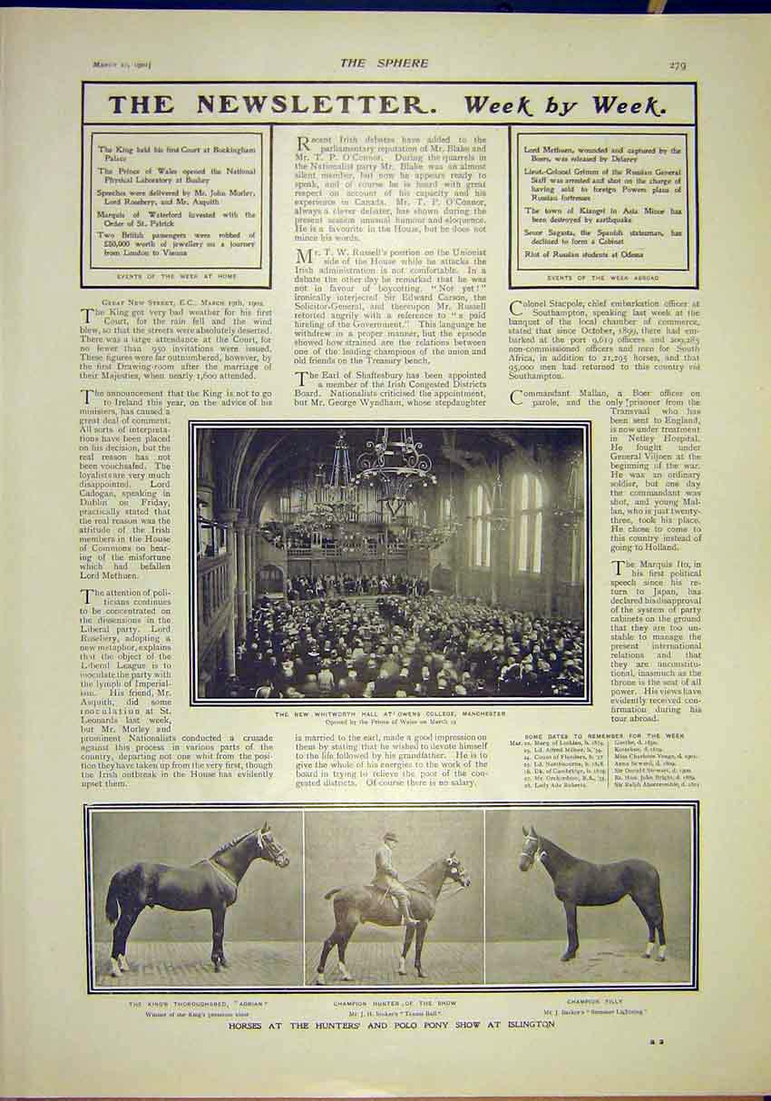 Print Whitworth Hall Manchester Horses Hunters Polo Show 1902 797311 Old Original