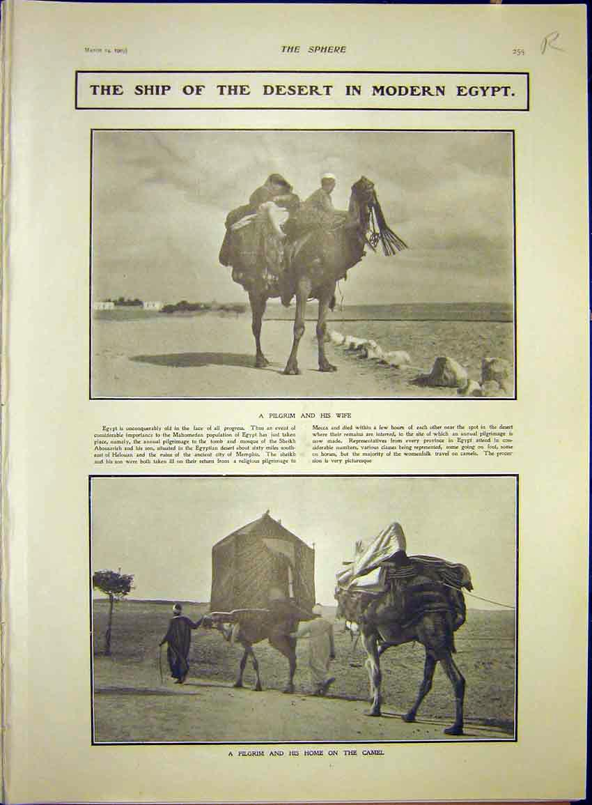 Print Ship Desert Camel Egypt Amercian Coast-Defence 1903 55R7341 Old Original