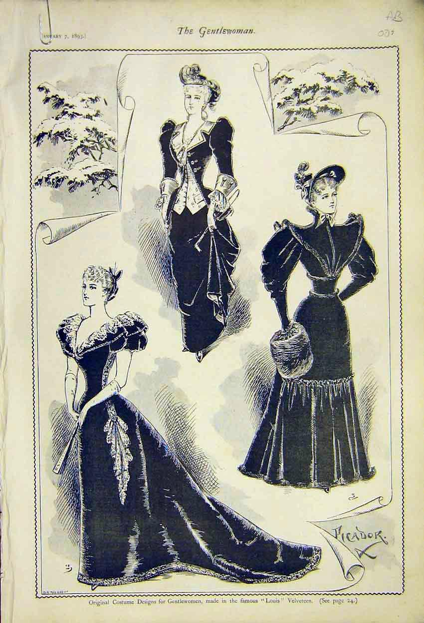 Print Costume Designes Gowns Ladies Fashion Velveteen 1892 07A7371 Old Original