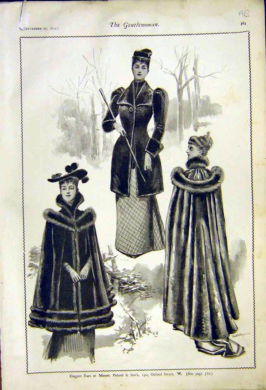 Print Ladies Fashion Furs Poland Cloaks Mantles Robinsons 63A7371 Old Original