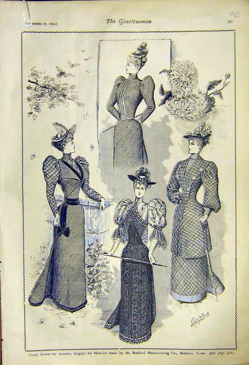Print Autumn Gowns Ladies Fashion Bradford Nicholson 1892 75A7371 Old Original