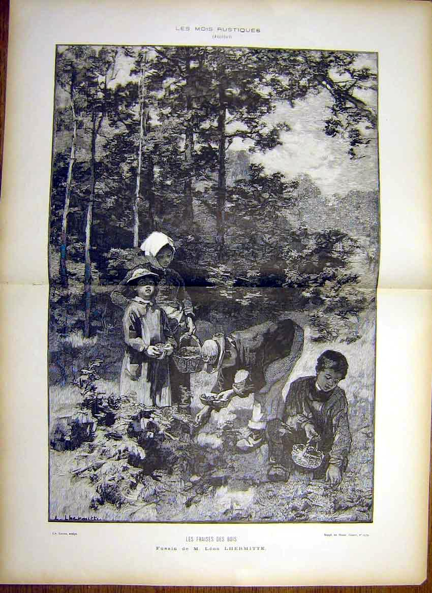 Print Berries Forest Berry-Picking Lhermitte 1885 03T7461 Old Original
