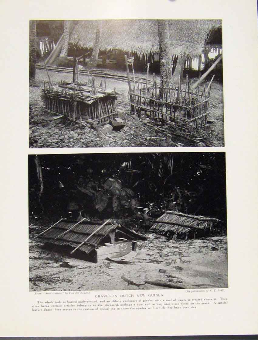 Print Graves Dutch New Guinea Roplanks C1931 567521 Old Original