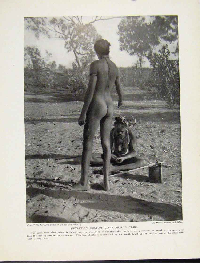 Print Initiation Custome Warramunga Tribe Australia C1931 487521 Old Original
