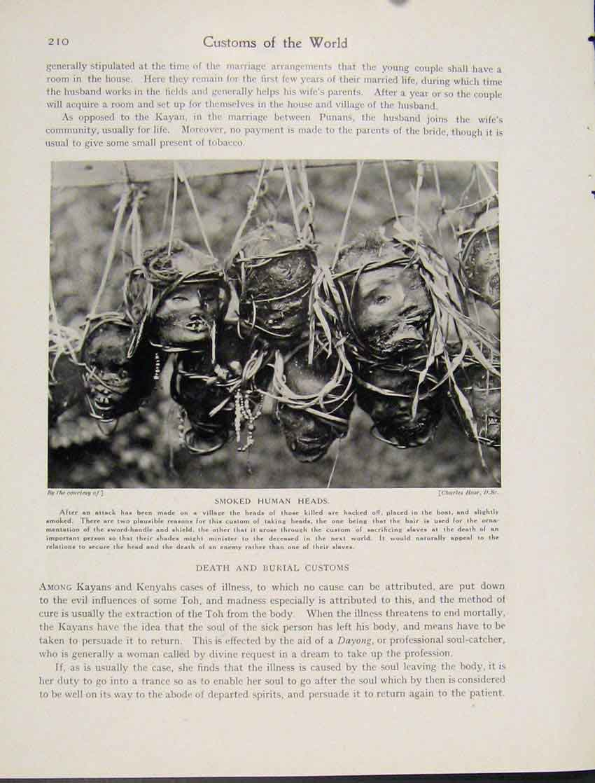 Print Death Burial Customs Borneo Smoked Human Head Photo 107521 Old Original