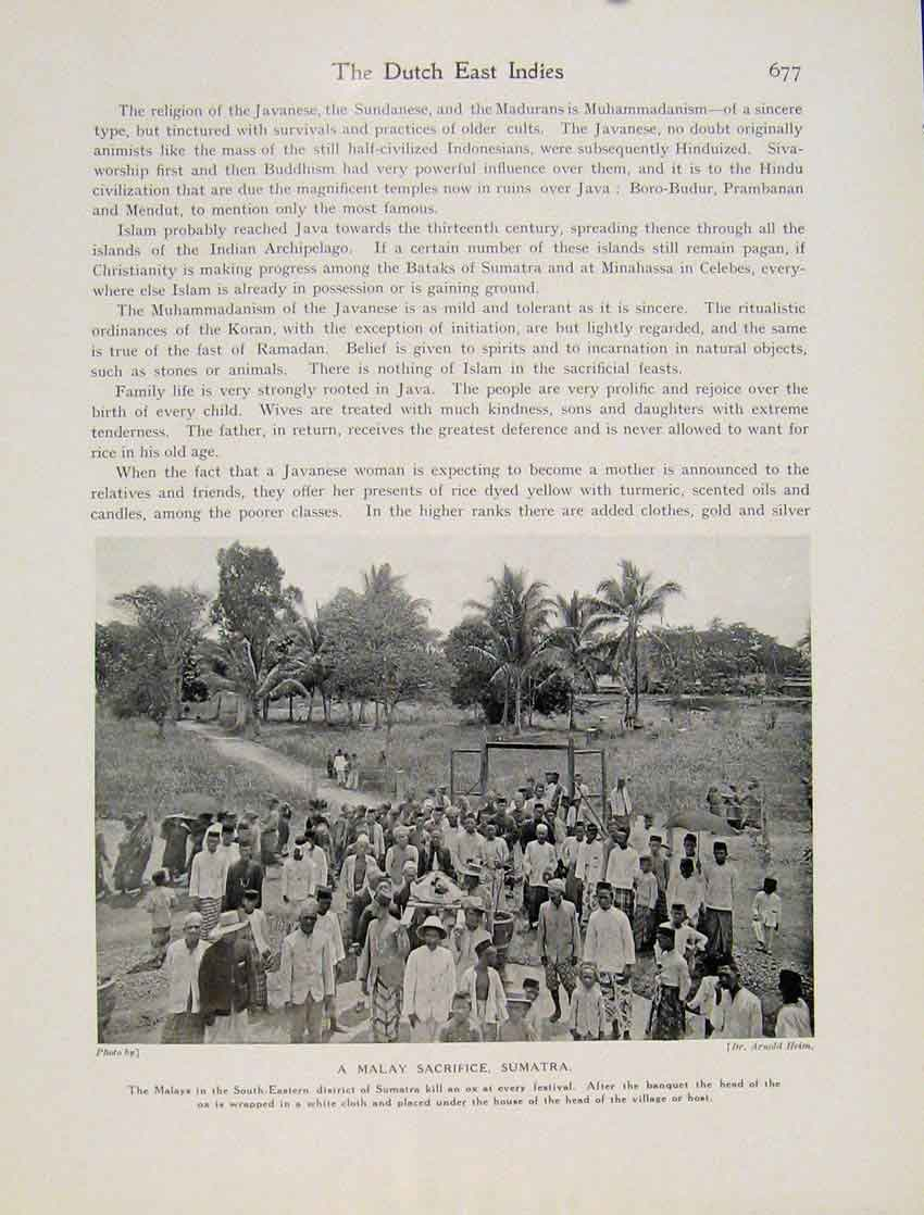 Print Malay Sacrifice Sumatra Festival Photo C1931 6777531 Old Original