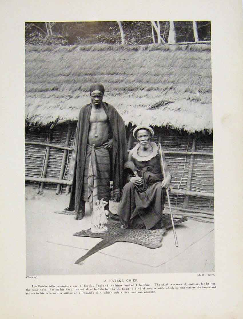 Print Hairdressing Sango Tribe Upper Congo Africa 7487531 Old Original